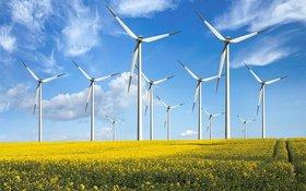 Foto von Windrädern in einem Rapsfeld
